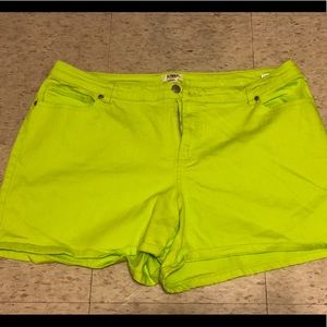 Cato's Plus Size Lime Green Shorts
